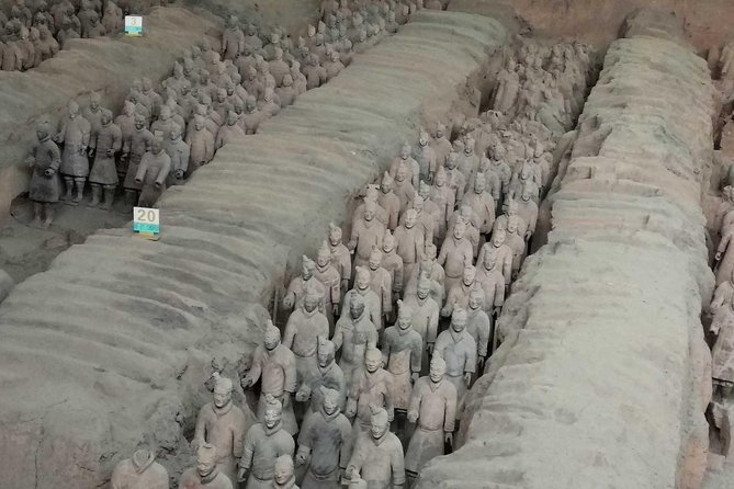 Xian Group Tour of Terracotta Army Museum and Ancient City Wall photo 3