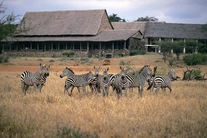 4 Days in Tsavo West & Amboseli National Park Tours
