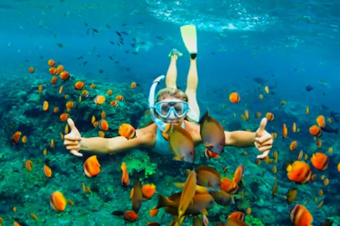 Snorkeling and Beach Break with Unlimited Drinks