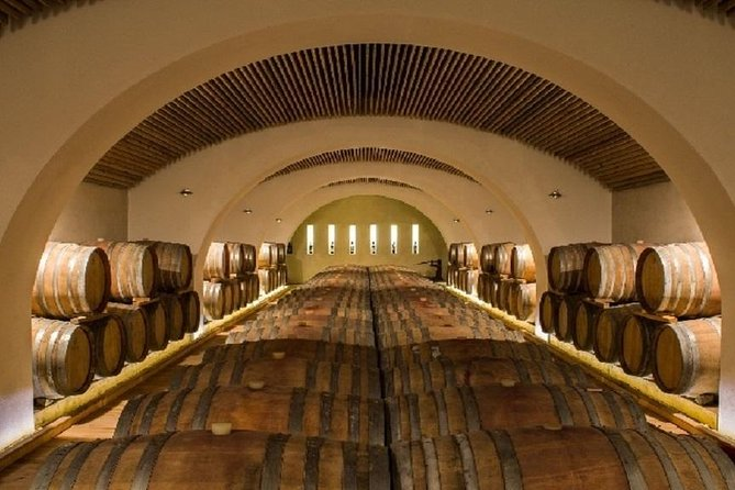 Bisignano: visit to the vineyard and wine tasting