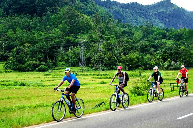 Nature cycling trail: paddy fields, cinnamon forests and villages – Galle