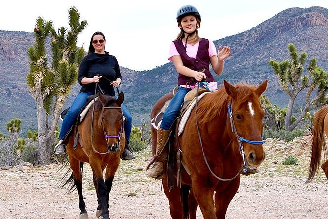 Horseback Riding/AZ Joshua Tree Forest & Buffalo Tour photo 2