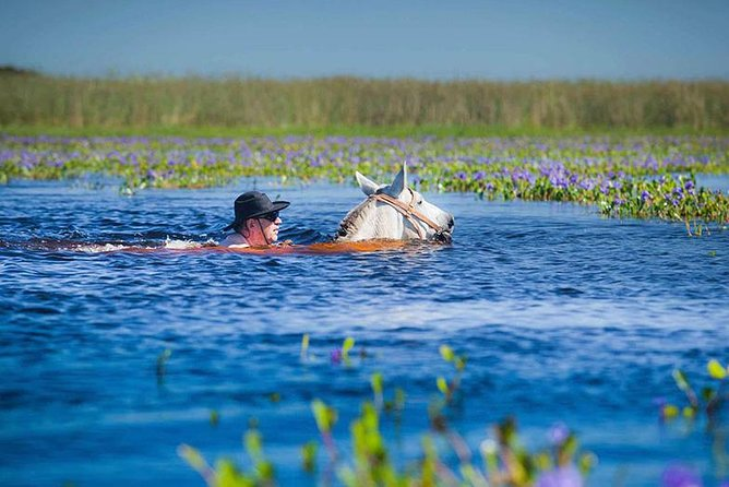 Horseback Riding & Swimming in Esteros del Iberá, Argentina