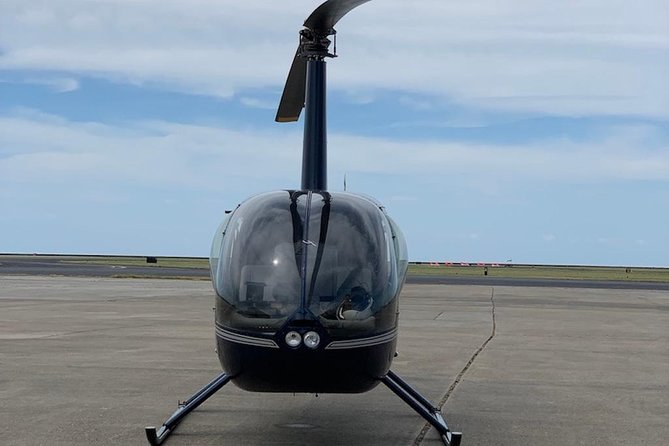 Fly a Helicopter in New Orleans (90 min. lesson): No Experience Necessary