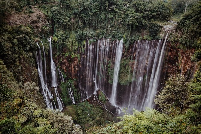 East Java Tours Package 4D 3N (Volcano - Waterfalls Photography) photo 8