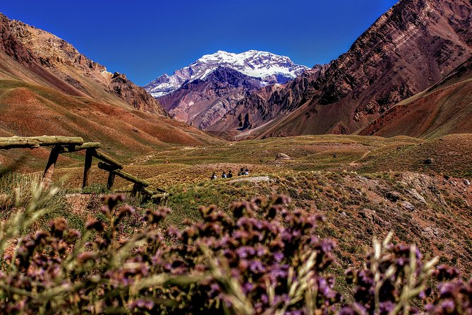 4-day Semi-private Tour of Mendoza Andes & Wine