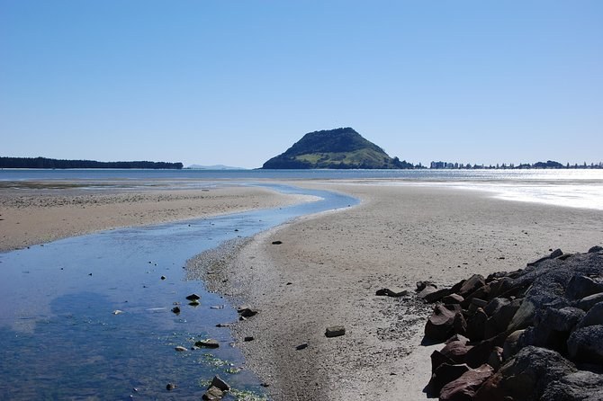 Private Tour Tauranga Highlights Shore Excursion up to 8 passengers