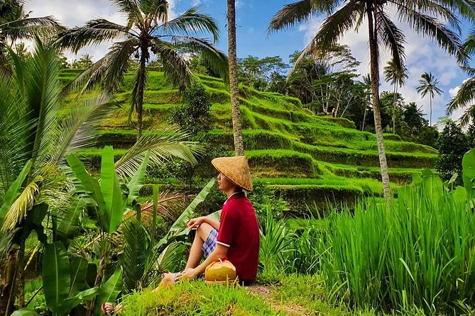 Explore The Best Of Ubud In A Day