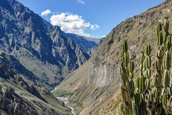Colca Canyon & Lake Titicaca In 2 Days From Arequipa To Puno photo 7