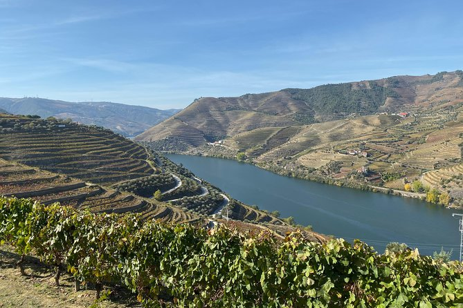 Douro Valley and Porto from Lisbon - Wine and Cheese Tasting