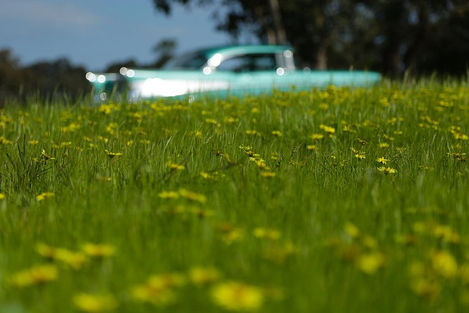 '56 Chevrolet 6-Hour Yarra Valley Indulgence Classic Car Private Tour (4 person) photo 6