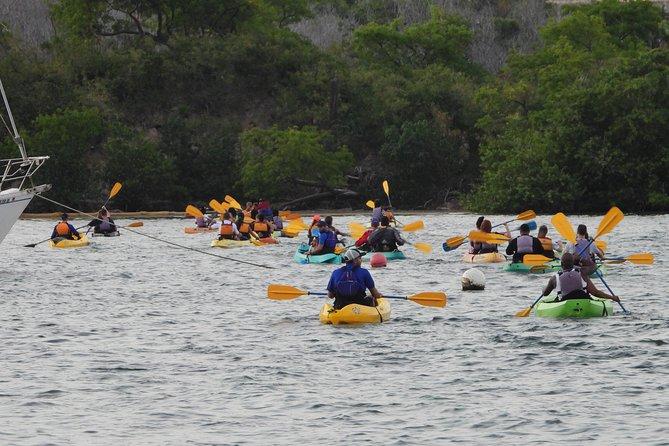 Bio Bay Night Kayaking 5:30pm | with Transportation from San Juan area