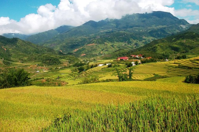 Sapa trekking and homestay tour by bus 2D1N