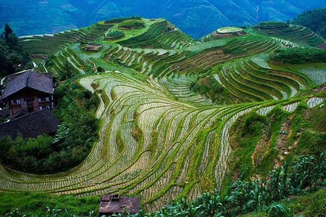 Private tour to World's Most Incredible LongJi Rice Terrace