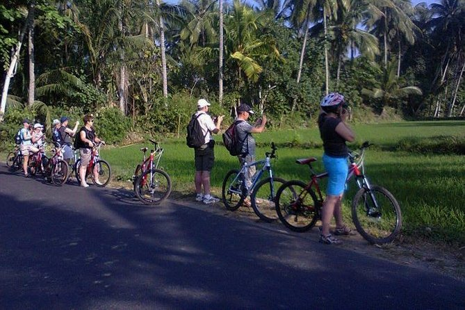 Lombok Cycling Tour: Tempos Rice Field, Hand Weaving Village & Pengsong Temple