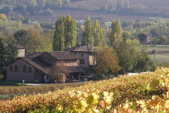 Tasting Casa Benna wines, a family business in the land of Gutturnio