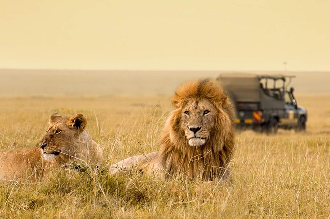 Murchison Falls National Park Budget Safari - 2 DAYS