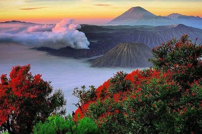 Bromo Ijen Trekking Tour From Bali