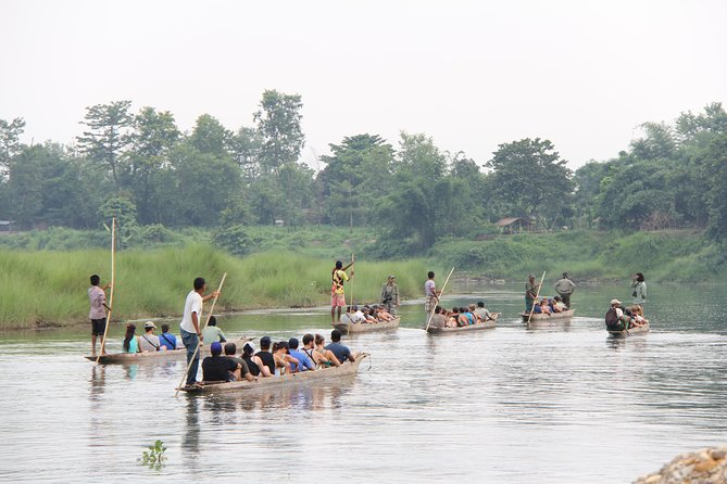 Jungle Towernight Stay In Chitwan National Park ,nepal-2 Nights 3 Days Package photo 18