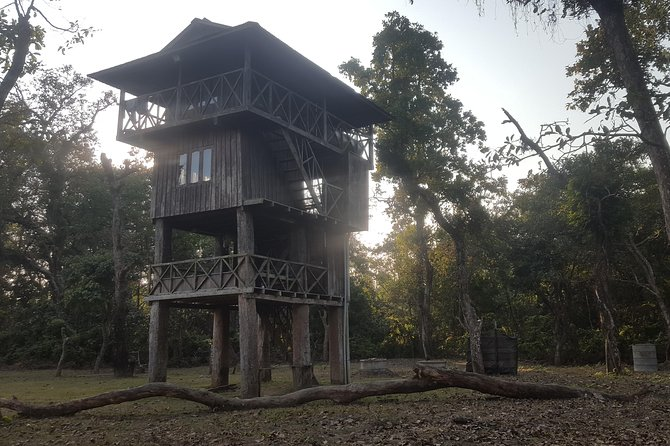 Jungle Towernight Stay In Chitwan National Park ,nepal-2 Nights 3 Days Package photo 27