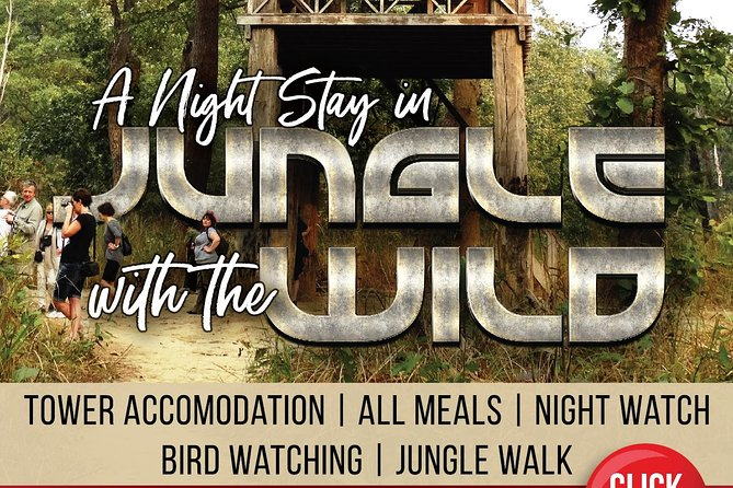 Jungle Towernight Stay In Chitwan National Park ,nepal-2 Nights 3 Days Package photo 20