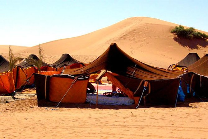 2 Days 1 Night To Zagora Desert From Marrakech (private tour) photo 8