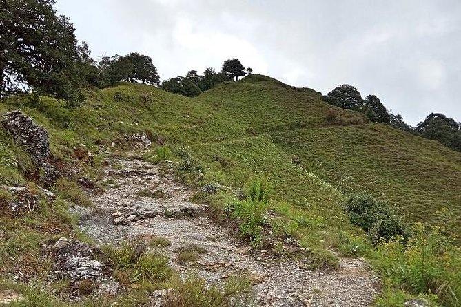 Benog Tibba Nature Trail