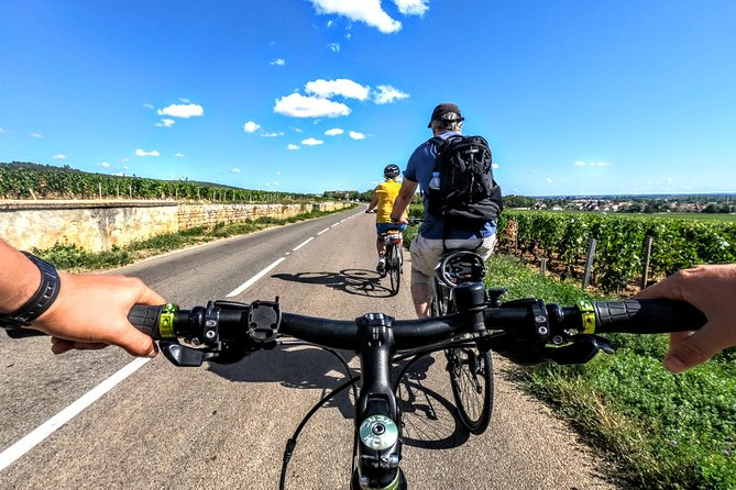 Discovery by bike & Tasting in the vineyards
