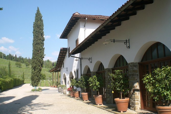 Fall in love with our winery in the heart of Friuli: Welcome to Colutta Farm photo 1