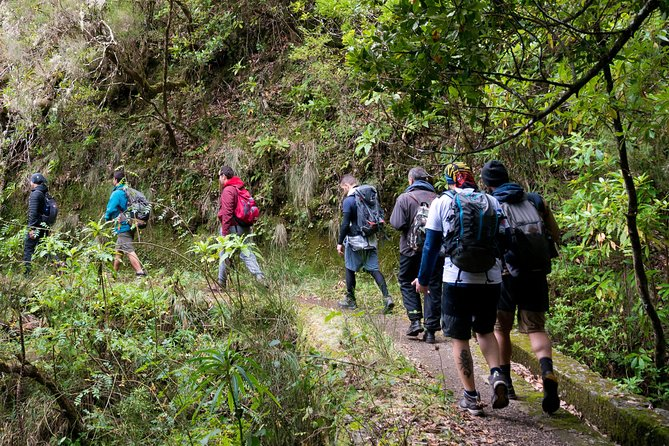 Hiking and Trekking tours in Madeira