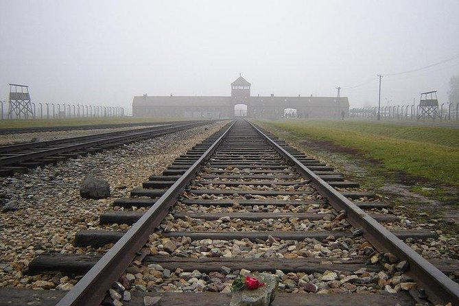 From Krakow: Auschwitz Birkenau - Individual Tour with Private Transport