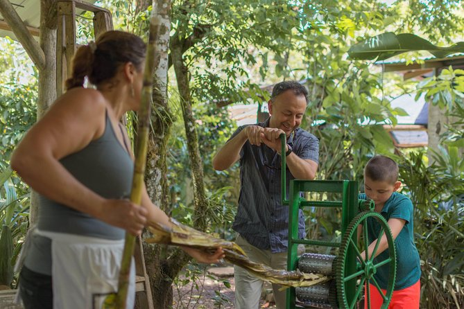 La Fortuna's Nature and Wildlife in a Single Day