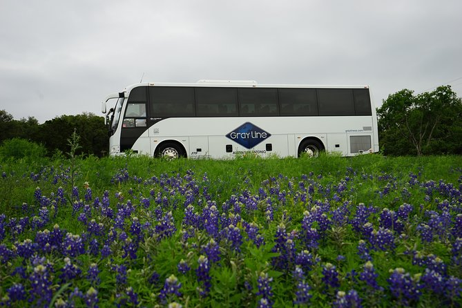 Texas Hill Country and LBJ Tour From Austin photo 6