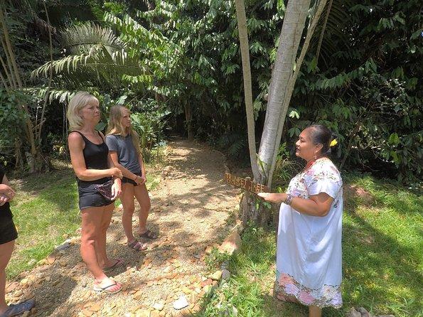 Mayan Herbal Garden Experience