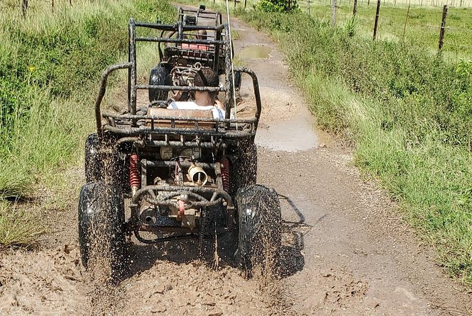 St. Mary's Mud Buggy Experience photo 9