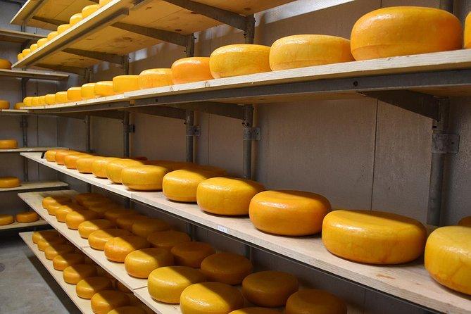Gouda Cheese Experience & Non Tourist trap visit Cheese Farm & Windmills