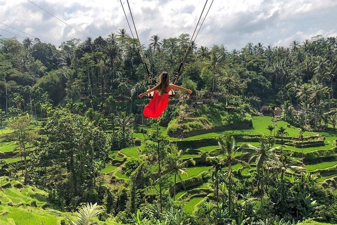 Private Ubud Day Tour With Bali Swing Rice Field