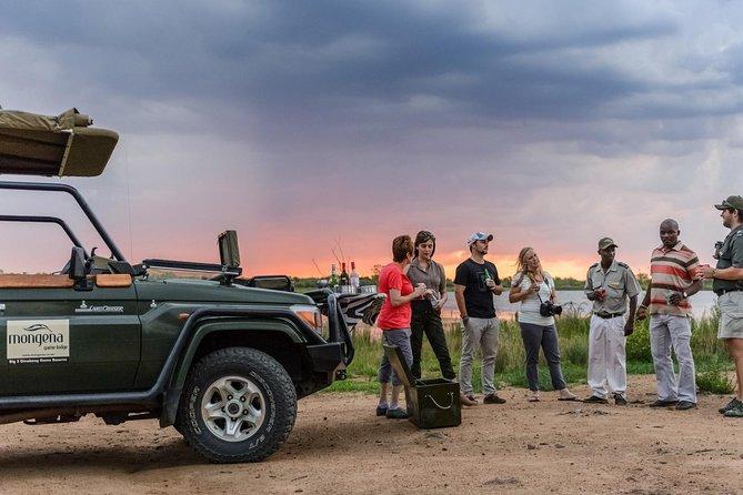Half Day 'Big 5' Dinokeng Safari, minutes from Johannesburg