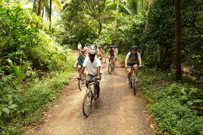 St Lucia Bike and Hike Half-Day Tour from the North Island photo 4