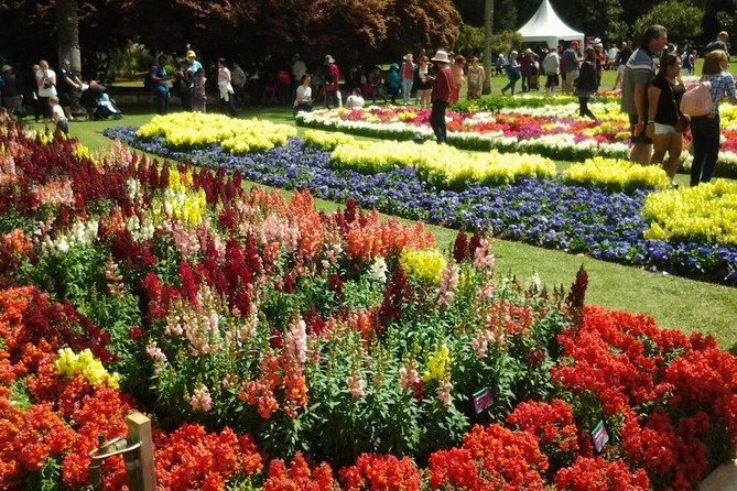 Carnival Of Flowers Toowoomba photo 1