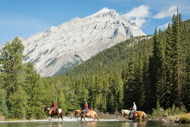 4 Hour Sulphur Mountain Horseback Ride
