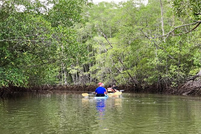 Kayak to the Heart of the National Park