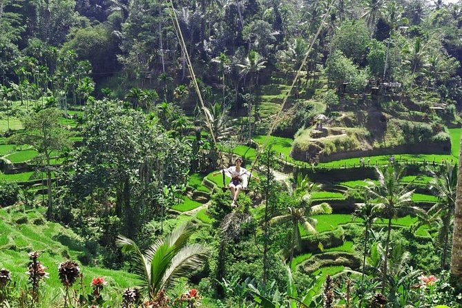 Bali Honest Tour Driver Guide, We create your Bali tour Hassle Free photo 8