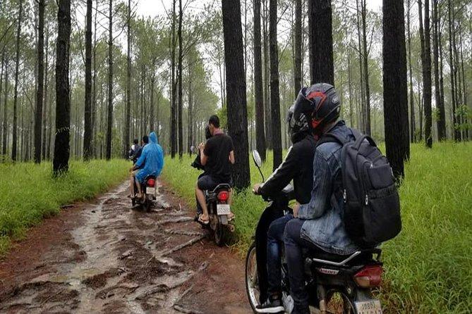 Survival Tour and Primitive Life