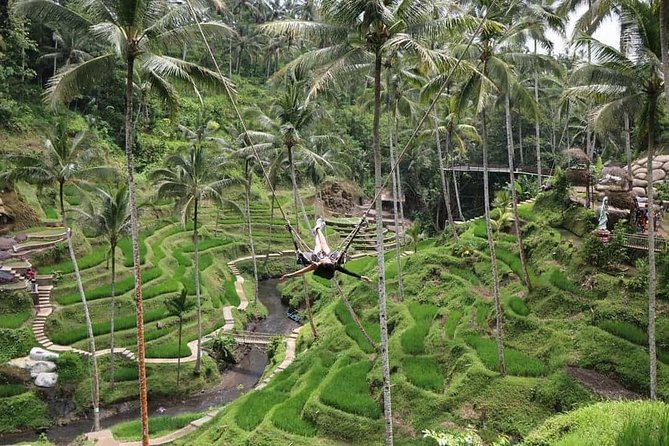 Bali Jungle Swing & Ubud Tour photo 3