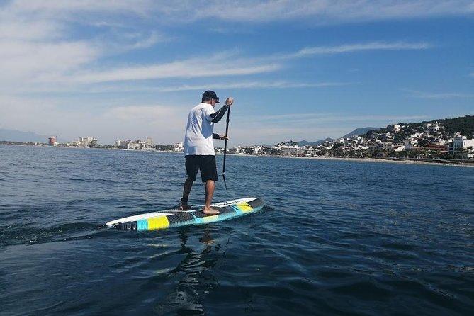 Paddle Board Vallarta