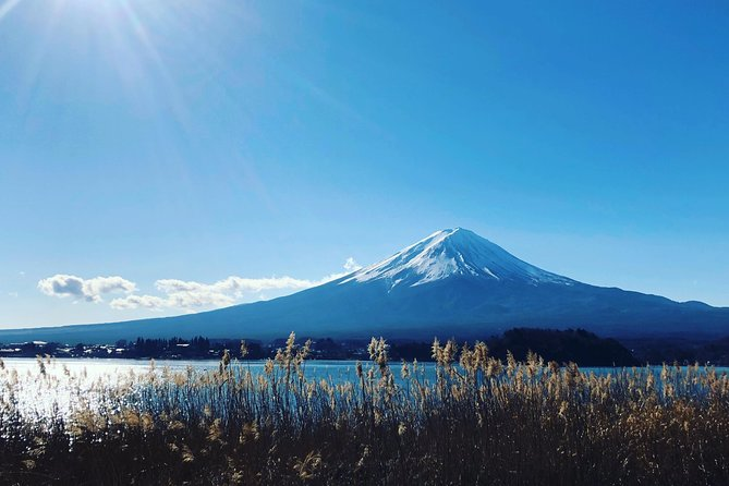 Private Half-Day Mt. Fuji and Surrounding Area Tour photo 3