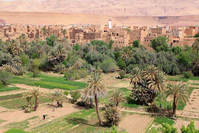 Marrakech to Zagora 2 Days