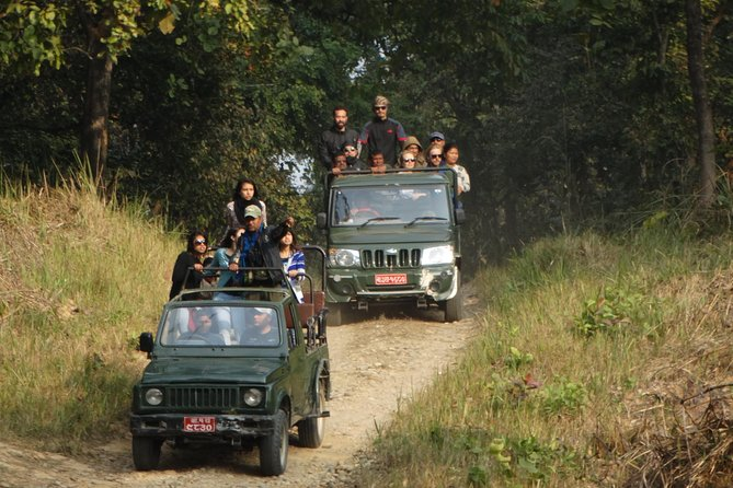 Jungle Towernight Stay In Chitwan National Park ,nepal-2 Nights 3 Days Package photo 25