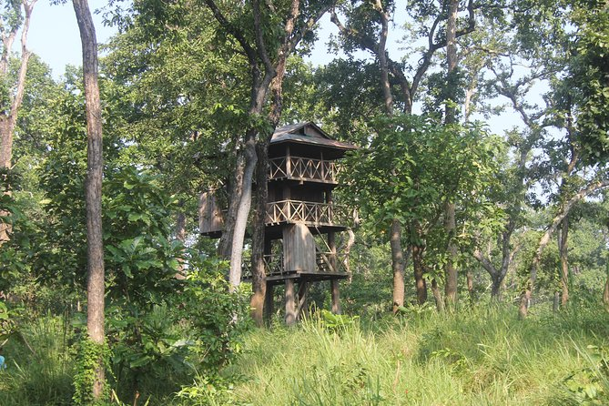 Jungle Towernight Stay In Chitwan National Park ,nepal-2 Nights 3 Days Package photo 1